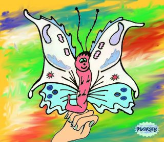 """La farfalla bianca le si appoggia sulla mano Giulia se ne accorge e la solleva piano piano Le guarda incuriosita sia le antenne che le ali """"ma che meraviglia questi piccoli animali!"""""""