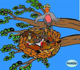 L'insetto spicca il volo sopra il prato profumato Giulia lo rincorre ma rimane senza fiato vedendo un alto ramo con un nido di uccellini con dentro la sua mamma che protegge i suoi piccini