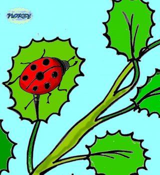 Oh che meraviglia su una foglia verde e bella Sta prendendo il sole una brava coccinella Con la schiena rossa e i suoi sette punti neri Giulia s'avvicina e l'osserva volentieri