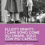 Mostra Eliott Erwitt: i cani sono come gli umani… fino al 3 febbraio 2019