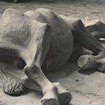 Una storia (Prevert, mon chere Prevert ) – Roberto Rododendro