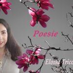 Intervista ad Eloisa Ticozzi – Poetessa