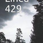 """Recensione de """"Linea 429"""" romanzo di Salvatore Scalisi"""