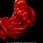 """RECENSIONE: """"L'ABITO ROSSO"""" – LOREDANA ZENI – SILLABE DI SALE EDITORE"""