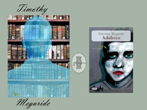 Intervista a Timothy Megaride – Adolesco – Il ramo e la foglie editore